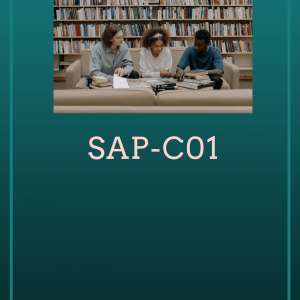 SAP-C01 AWS Certified Solutions Architect Professional Exam